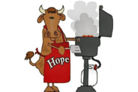 Bull Roast Fundraiser